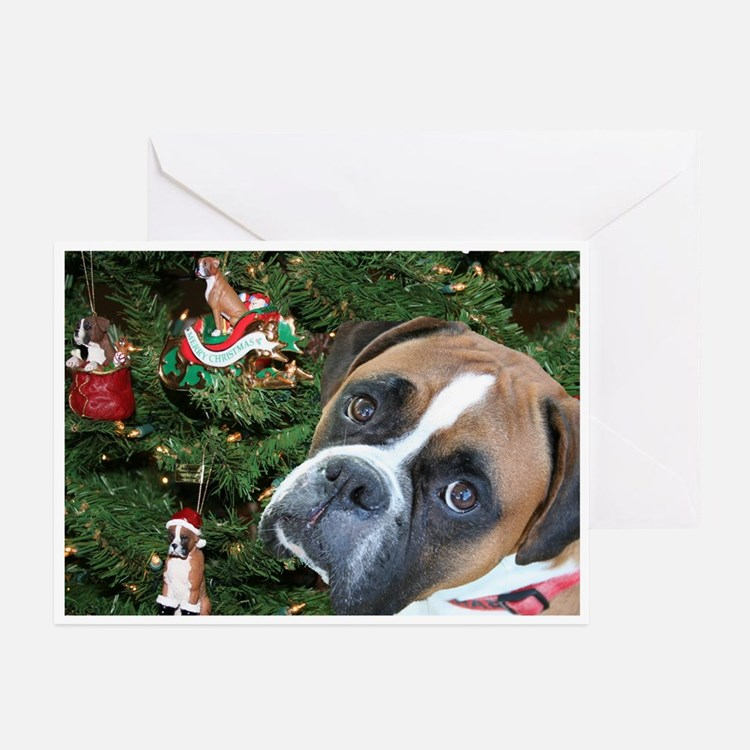 Baron Christmas Cards (Pk of 10)