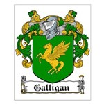 Galligan Coat of Arms Small Poster