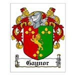 Gaynor Coat of Arms Small Poster