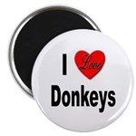 I Love Donkeys Magnet
