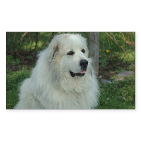 Great Pyrenees Rectangle Sticker