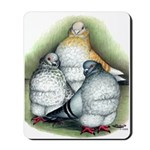 Chinese Owl Pigeons Mousepad