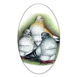 Chinese Owl Pigeons Oval Sticker