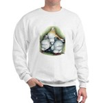Chinese Owl Pigeons Sweatshirt