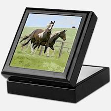 Pinto horses ceramic tile Alder hinged tinket box