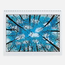 Wall Calendar (JFPeters)