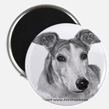 Zoie, Greyhound Magnet