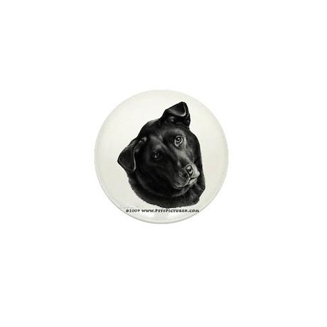 Corvis, Black Lab Mix Mini Button