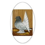 Indian Fantail Pigeon Oval Sticker