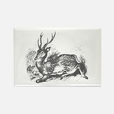 Deer Wood II Rectangle Magnet