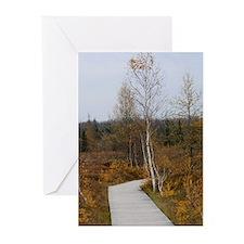 Autumn Boardwalk (Pk of 10)