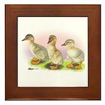 Buff Ducklings Framed Tile