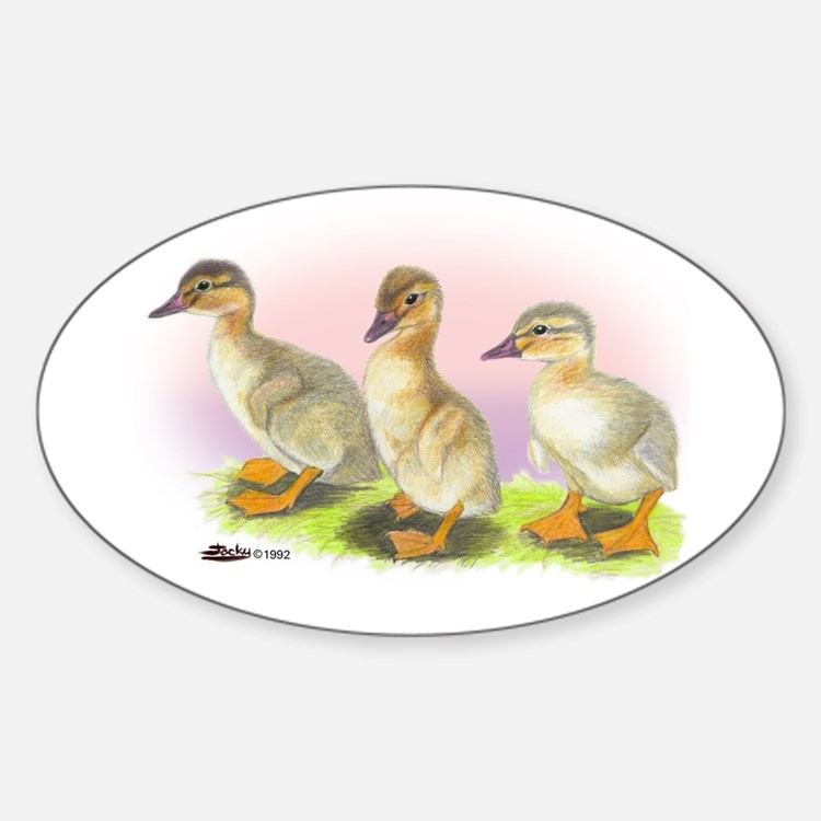 Buff Ducklings Oval Decal