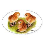 Red Leghorn Chicks Oval Sticker