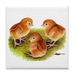 Red Leghorn Chicks Tile Coaster