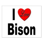 I Love Bison Small Poster