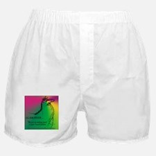 Llamatude Radial Boxer Shorts