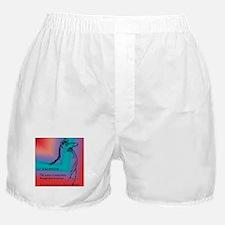 Llamatude Red Rain Boxer Shorts