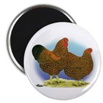 GL Wyandotte Rooster and Hen 2.25