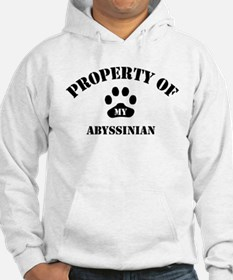 Property of My Abyssinian Hoodie