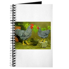 Barred Rock Rooster and Hen Journal