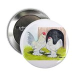 Porcelain d'Uccle Rooster and 2.25