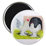 "Porcelain d'Uccle Rooster and 2.25"" Magnet (1"