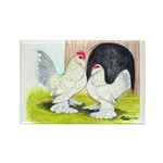 Porcelain d'Uccle Rooster and Rectangle Magnet