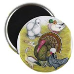 Assorted Poultry #3 Magnet