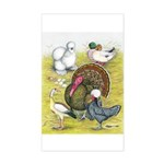 Assorted Poultry #3 Rectangle Sticker