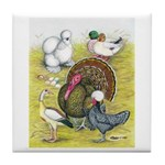 Assorted Poultry #3 Tile Coaster