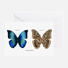 Tropical Morpho Butterfly Greeting Card