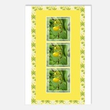 Yellow Ladyslipper Postcards (Package of 8)