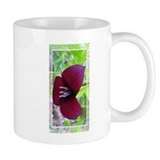 African Daisy Mug