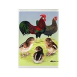 Danish Leghorn Rooster, Hen & Rectangle Magnet (10