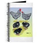 Plymouth Rock Rooster, Hen & Journal