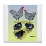 Plymouth Rock Rooster, Hen & Tile Coaster
