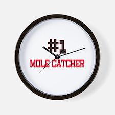 Number 1 MOLE CATCHER Wall Clock