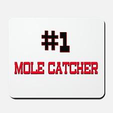 Number 1 MOLE CATCHER Mousepad
