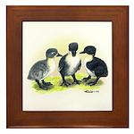 Swedish Duck Ducklings Framed Tile