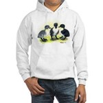Swedish Duck Ducklings Hooded Sweatshirt