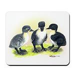 Swedish Duck Ducklings Mousepad