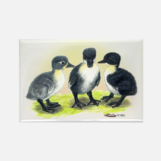 Swedish Duck Ducklings Rectangle Magnet