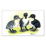 Swedish Duck Ducklings Rectangle Sticker