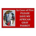 Parrots Rectangle Sticker 50 pk)