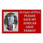 Parrots Rectangle Sticker 10 pk)