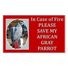 Parrots Rectangle Decal
