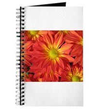 Orange Mums Journal