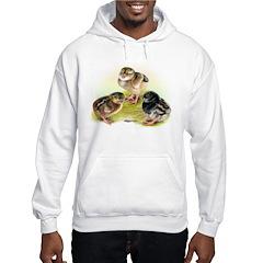Dark Cornish Poultry Chicks Hooded Sweatshirt