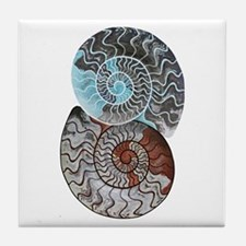 Cute Ammonite Tile Coaster